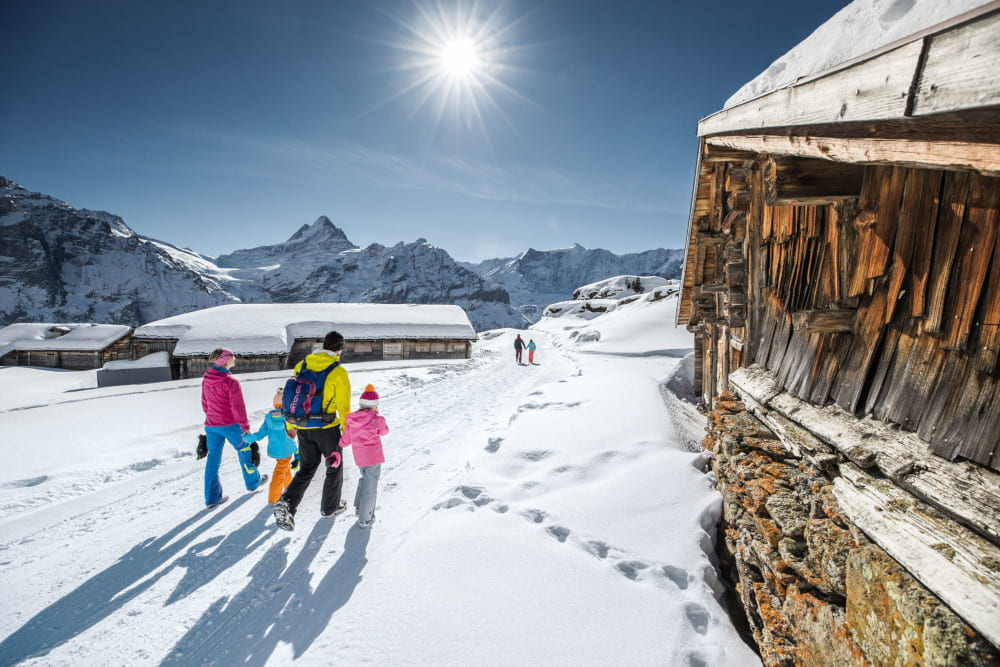 Winter fun for non-skiers: the Winter Corona Pass from the Jungfrau Railways