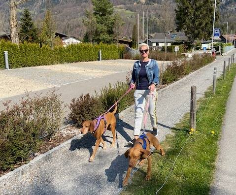 Susanna Zysset from Camping Aaregg in Brienz love to hike with her dog on Axalp, above Lake Brienz